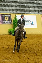 160505_D600_3678.jpg (shirley319) Tags: horse unitedstates lexington kentucky may nationals equestrian 2016 d600 horsecompetition ihsa kentuckyhorsepark