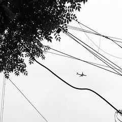 Stuck (Raghunathan Anbazhagan) Tags: street sky india abstract tree leaves plane leaf flight streetphotography wires streetphoto conceptual tamilnadu clumsy incredibleindia