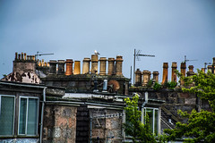 Bridge (Lola Ylo) Tags: chimney people dog white black cold bird animal metal architecture outside scotland nikon fireplace aberdeen d3200 18140mm