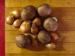 Mushrooms and shallots (andyscamera) Tags: food ontario canada mushrooms shallots peterborough peterboroughcounty andyscamera downtownfarmersmarket