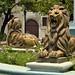 Altri leoni