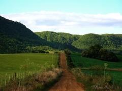 A estrada ( Debora  ... very busy!) Tags: mountain verde green brasil way landscape paisagem estrada santamaria riograndedosul montes