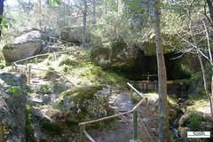 Fuente de los Apretaderos 03 (Historia de Covaleda) Tags: espaa spain fiesta paisaje douro pinos soria historia pinar tradicion duero covaleda