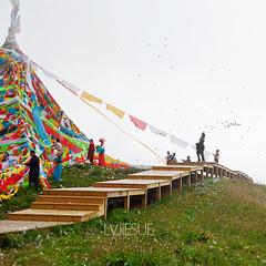 Nianbaoyuze Holy Mountain#12 (K2 Sue) Tags: china summer lake tibetans clouds standing paper photography walk plateau religion lawn buddhism monks level prayerwheel prayerflags multicolored hada pilgrims earlyinthemorning chineseculture colorimage famousplace tibetanculture chineseethnicity qinghaiprovince organizedgroup tibetanclothing jiuzhi tibetantower tibetanlandscapes goddesslake nianbaoyuzeholymountain