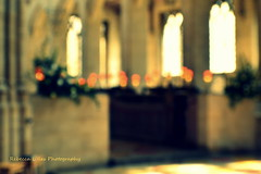 Cathedral bokeh (Like me on facebook! Rebecca L. Iles Photography) Tags: church architecture buildings lights bury nikon cathedral bokeh indoors dslr burystedmunds nikond3200 lamplights