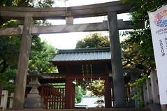 untitled (t-miki) Tags: tokyo shrine sony shibuya sigma    nex6