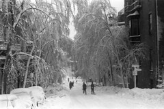 020769 20 (ndpa / s. lundeen, archivist) Tags: street trees houses homes winter people blackandwhite bw snow storm cars 1969 film monochrome boston 35mm buildings ma blackwhite massachusetts nick snowstorm pedestrians 1960s february snowfall blizzard shovels parkedcars beaconhill snowcovered winterstorm dewolf heavysnow bigsnow recordsnowfall recordsnow nickdewolf photographbynickdewolf