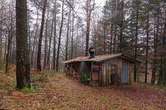Serie nieblas: La llegada (atvjavi) Tags: casa bosque otoño navarre hayas navarra caseta nafarroa urkiaga quintoreal atvjavi