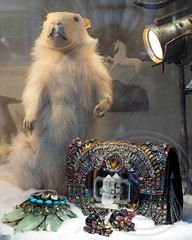 Bergdorf Goodman Holidays on Ice Window Display 2013, Midtown Manhattan, New York City (jag9889) Tags: christmas city nyc holiday ny newyork window fashion shopping store display manhattan 5thavenue midtown groundhog theme borough icy scenes department bg groundhogday bergdorfgoodman flagship 2013 holidaysonice jag9889
