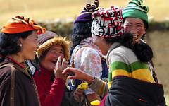 Tibetans are always up for a laugh, Tibet 2013 (reurinkjan) Tags: beautiful 2013 dzachuka བོད་ལྗོངས། བུད་མེད ©janreurink tibetanplateauབོད་མཐོ་སྒང་bötogang tibetབོད sershulསེར་ཤུལ།county nomadསོག་ཡུལ་གྱི་འབྲོག་པsokyülgyindrokpa individualnoncollectivizednomadsཁེར་རྐྱང་འབྲོག་པkherkyangdrokpa nomadrichincattlecattlewealthཕྱུགས་ཀྱིས་ཕྱུག་chukkyichuk womanསྐྱེས་དམན་kyemen prettywomanབུད་མེད་མཆོར་མོbüméchormo ladyfemalewomanམོmo femalesམོ་རྣམསmonam khamཁམས།easterntibet nomadsའབྲོག་པ།brogpadrokpa ༢༠༡༣ khamཁམས་བོད khamsbodkhamwö nomadswhoaredeptattamingcattleཕྱུགས་འདུལ་བ་ལ་རབ་ཏུ་མཁས་པའི་འབྲོག་པchundülbalaraptukhepédrokpa bümé womanབུད་མེད་མཆོགbümemchok མོ་སྐྱེས mokyé