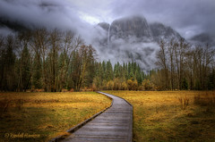 Path to Yosemite Falls (Randall Harrison) Tags: trees mountain mountains yosemitefalls yellow clouds waterfall path meadow yosemite yosemitevalley upperyosemitefalls bestcapturesaoi elitegalleryaoi vision:sunset=0546 vision:mountain=06 vision:outdoor=0882 vision:sky=0851