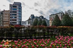 Oviedo, Asturias. Espaa. (RAYPORRES) Tags: espaa asturias oviedo marzo 2014