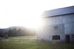 home. (himmelseng) Tags: sunset sun bread mom hands sheep gloves
