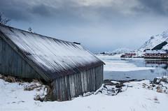 Blue hut (katrin glaesmann) Tags: lofoten vestvgy norway2015 unterwegsmiticelandtours photographyholidaywithicelandtours