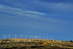 wind farm (~ Mariana ~) Tags: winter sky canada landscape nikon ab mariana crowsnestpass windpower ilovemypics travelsofhomerodyssey outstandingromanianphotographers marculescueugendreamsoflightportal