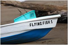 Flying Fish One (SergeK ) Tags: sea mer fish beach boat flying costarica drake bateau plage puntarenas centralamerica sergek