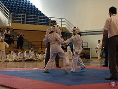 stefanou_15_5_2016_knockdown_219