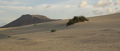 Canary Islands Spain Fuerteventura La Oliva Dunes (charles.duroux) Tags: nyip