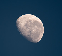 Early morning moon (Merrillie) Tags: moon photography nikon earlymorning australia nsw newsouthwales daytime centralcoast lunar bluemoon woywoy d5500 nswcentralcoast centralcoastnsw tamron600mm
