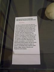 20160505_Baden_39 (weisserstier) Tags: austria sterreich exhibition baden niedersterreich ausstellung loweraustria habsburger kaiserhaus gartenmanie