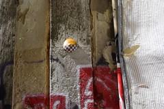 Intra Larue 738 (intra.larue) Tags: street urban art portugal breast arte lisboa pit urbana urbano teta sein moulding lisbonne urbain pecho peito intra formen seno brust moulage tton