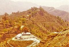 Our Village Tallo Balew Manakamana VDC 5 Syangja (James Bespoke Suit Phuket Thailand) Tags: trip nepal usa portugal norway thailand peace district buddha australia kathmandu rana mechi pokhara gurung bespoke walling magar kanchan gandaki syangja butwal tripadvisor rupandehi awashesh bishesh tallobalew withbharatmanojbhaiwithus14nov2015 awashseh metwithbigbuddhachairpersonpujyaniyajatilajatilmyanmarbhantejyuvisitingbigbuddhaphuketon22july2014withusmanojrana