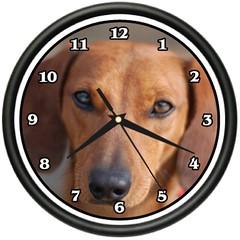 BROWN DACHSHUND Wall Clock dog doggie pet breed gift (wallclockusa1) Tags: wordpress ifttt