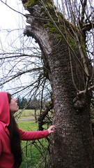 (KristinVictoria) Tags: wood pink trees winter wild tree apple water girl grass leaves creek forest dead washington leaf hoodie big maple woods branch natural state branches doug willow western fir wa douglas knots willows flooded knotted