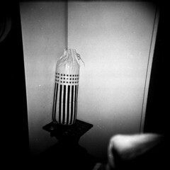 2- Transizionale (Gattacicova92) Tags: holga 120 cfn film lomo lomography pellicola rullino analog analogica argentique analogue ilford hp5 800 iso asa rodinal push processing bianco nero black white monochrome reportage documentary essay photoessay racconto raccontofotografico medium format filmisnotdead shootfilm buyfilmnotmegapixels