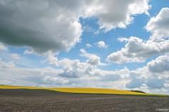 19052016-_DSC0015 (vidjanma) Tags: nature soleil ciel nuages courbes