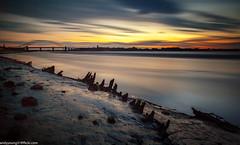 Wigg Island (3 of 3) (andyyoung37) Tags: uk sunset cheshire runcorn boatwreck rivermersey runcornbridge