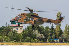 Eurocopter AS532 Cougar, Turkish Army, Exercise Anatolian Eagle 2016, Konya, Turkey (harrison-green) Tags: pakistan canon turkey airplane army eos chopper force eagle bell outdoor aircraft aviation air jet sigma f16 huey helicopter land vehicle blade cougar turkish nato forces eurocopter rotor iroquois anatolian 2016 uh1 as532 700d 150500mm