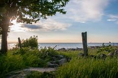 Ocean View (HavardKleppe) Tags: ocean blue sky green beach grass sweden land