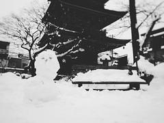 Hida Kokubunji in Takayama () (Jon-F, themachine) Tags: winter snow japan asian asia olympus  nippon japo oriental orient fareast takayama  gifu   nihon omd japn hidatakayama 2016    m43  mft  gifuken    mirrorless    micro43 microfourthirds  ft xapn jonfu  mirrorlesscamera snapseed   em5ii em5markii