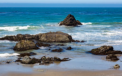 7P7A2636-Edit (Mark Ritter) Tags: ocean flowers water landscape coast highway rocks pacific pch