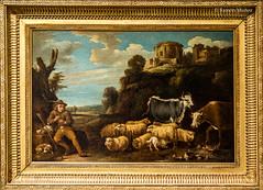 DSC8424 David Teniers II, el Joven - Pastor y rebao, Museo de Bellas Artes de Orlans (ramonmunoz_arte) Tags: de orleans muse des museo artes francia bellas beauxarts