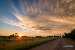 Norfolk Road Sunset (kevin-palmer) Tags: storm stormy thunderstorm june summer sky weather clouds nikond750 tokina1628mmf28 blue norfolk nebraska greatplains evening dusk sunset colorful gold golden yellow dying lpsupercell green grass three trees sun mammatus