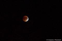 Supermoon Total Eclipse - Washington D.C. (Olivier Gz) Tags: us washington lumière couleurs maryland instant nuit gaithersburg etatsunis étatsunis insolites