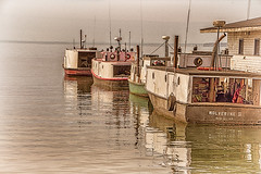 Fishing Fleet Is In (Images by MK) Tags: lake fish water wisconsin port boats fishing dock whitefish tugs wi lakesuperior bayfield dockside