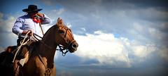 El hombre de Esquina (Eduardo Amorim) Tags: horses horse southamerica argentina caballo cheval caballos sauce cavalos corrientes pferde cavalli cavallo cavalo gauchos pferd chevaux gaucho amricadosul gacho amriquedusud  gachos  sudamrica suramrica amricadelsur sdamerika jineteada  americadelsud gineteada americameridionale eduardoamorim provinciadecorrientes corrientesprovince cavall