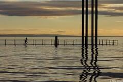 Des einen Freud, des anderen Leid (77PS) Tags: hafen hochwasser bodensee lakeconstance bregenz bregenzerhafen vorarlberg mdchen flood mole uppereastside