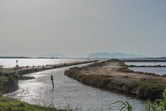DSC_6051 (Pasquesius) Tags: sea island dock mare lagoon sicily laguna saline molo sicilia saltponds isola marsala mozia mothia stagnone motya riservanaturaledellostagnone