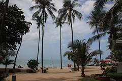IMGL5154 (harleyxxl) Tags: strand thailand kohsamui palmen newstarresort