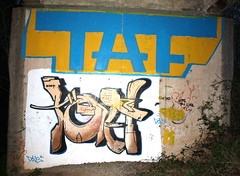 taf roller hi hit (Mr Vane..T.A.F) Tags: graffiti mr crew roller piece vane dub throwup emulsion taf siek ofk struk dfn respa