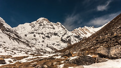 IMGP3336 ANNAPURNA SOUTH (7219M) , HINCHULI (6441M)  & FANG (7647 M) (frip0895) Tags: nepal abc himalaya fang npal annapurnasanctuarytrek annapurnabasecamp annapurnasouth hiunchuli annapurnasud hinchuli sanctuairedesannapurnas