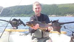 3lb Ferox Trout (salmoferox) Tags: fish scotland fishing loch trout cr browntrout ferox trolling catchandrelease catchrelease feroxtrout feroxfishing trollingforferoxtrout trollingloch