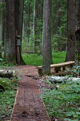 Kuuraniidu õpperada (Jaan Keinaste) Tags: forest estonia pentax mets eesti k7 soomaarahvuspark pentaxk7 kuuraniiduõpperada