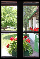 Opusztaszer  National Historical Memorial Park 12 - flowers in the window (Romeodesign) Tags: park old flowers red heritage history window court backyard memorial hungary bauer geranium skansen peasant muskátli geranie opusztaszer 550d nationalhistoricalmemorialpark ópusztaszer