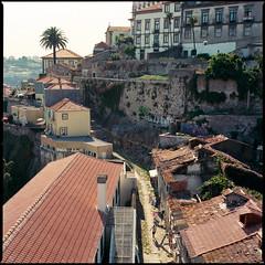 roof stories (v.ir.g.il.e) Tags: street 120 6x6 film portugal analog mediumformat square kodak roofs hasselblad porto argentique 503cw ektar100 zeissplanar80cfe
