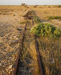 IMG_4437 (michomor) Tags: england lighthouse abandoned beach canon boat wooden kent fishing united shingle tracks rail kingdom machinery shipwreck 5d dungeness nets trawler shacks